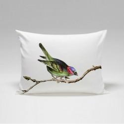 Fata perna Bird 50x70